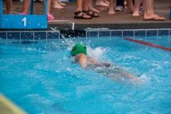 Swim Meet at Falcon Woods